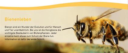 Bienenlehrpfad_Symbolfoto