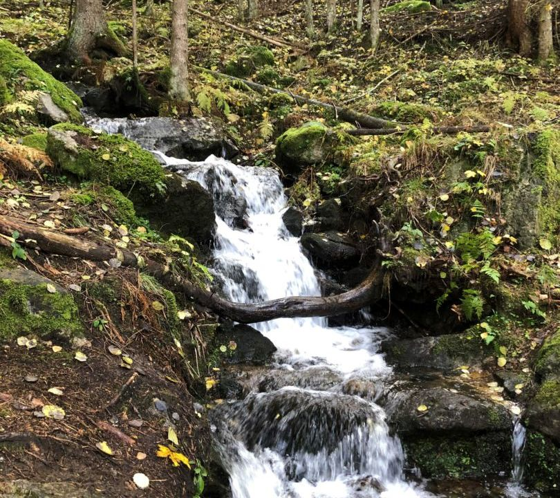 Kneipp-Panorama-Rundweg Mirnock